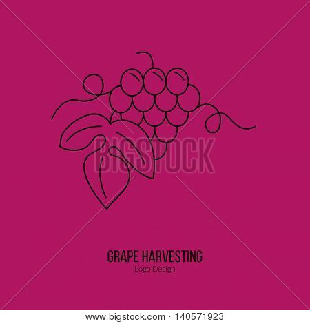 Grapes with leaf. Single logo in modern thin line style isolated on red background. Outline winery symbol. Simple mono linear pictogram. Stroke vector logotype template.