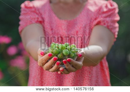 Juicy Berries Of A Gooseberry In A Small Bowl In Female Hands