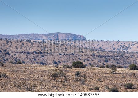 Mountain View -cradock Landscape