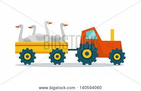 Domestic animals transportation vector. Flat design. Tractor with trailer caring geese. Fresh poultry delivery to market from the farm. Meat production and delivering concept. isolated on white.