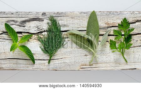 Garden culinary aromatic herbs on a weathered board top view