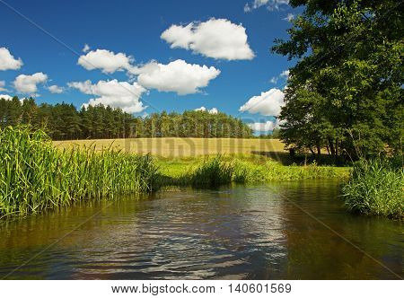 Beautiful postcard view from the river Chocina the meadows and forest with blue sky and white clouds .Poland Pomerania.Horizontal view