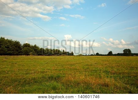 Beautiful green meadows in the summer in Poland Podlasie District near Tykocin blue sky with white clouds. Horizontal view.