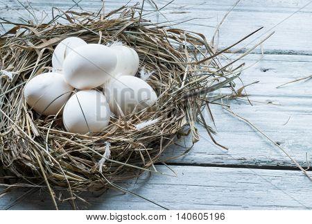 White chicken eggs in straw nest. Hen eggs in hay on wooden background