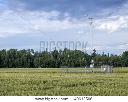 Weather station in a wheat field summer day