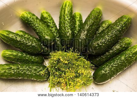 Some Cucumbers On The Plate