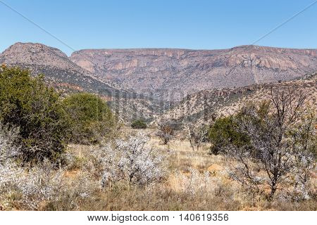 The Thorny Mountain View - Cradock Landscape