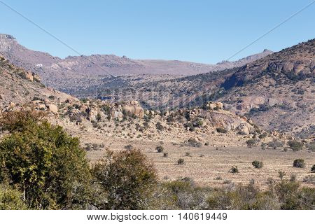 The Rocky Mountain View - Cradock Landscape