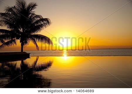 Sunrise In The Tropics
