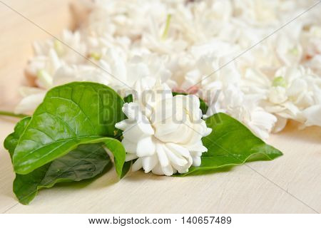 Flower Background Of Jasmine Flowers Spread On Wood Background