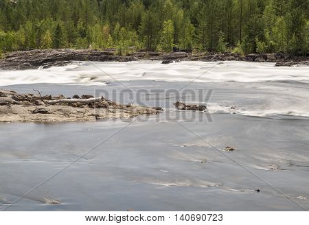 River with Forest and Driftwood in Sweden.