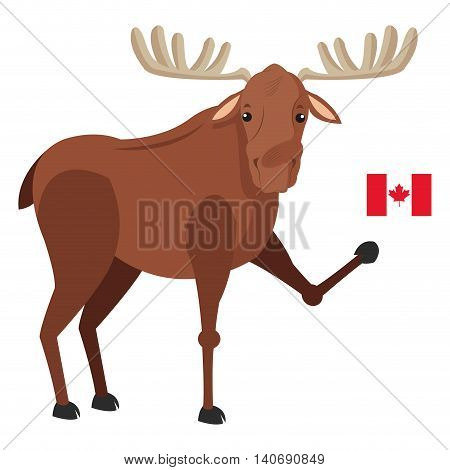 flat design single moose with canadian flag icon vector illustration