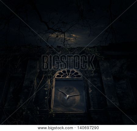 Bird fly with old ancient window castle over dead tree moon and cloudy sky Spooky background Halloween concept
