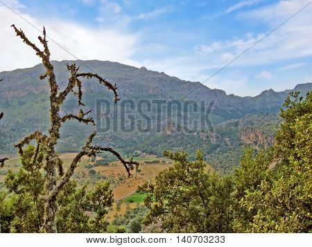 Somewhere in the Serra de Tramuntana mountains Majorca Spain