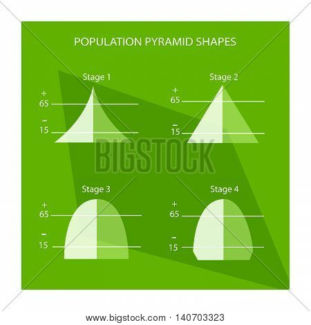 Population and Demography Illustration Set of 4 Stages of Population Pyramids Chart or Age Structure Graph.