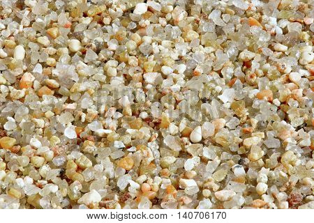 sea sand close up. light sea sand