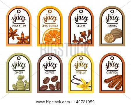 Tags with various spices. Illustration of anise cloves vanilla ginger and cinnamon.