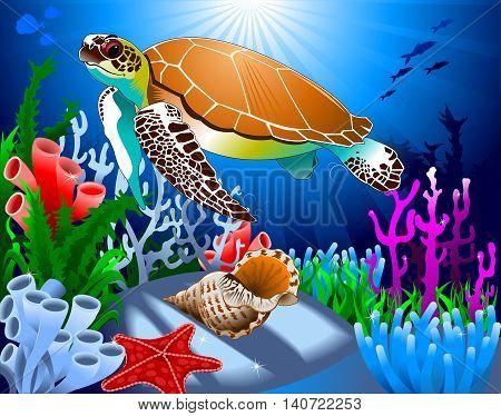 big beautiful sea turtle swimming in the sea vector