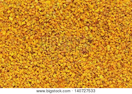 Organic Turmeric or Haldi (Curcuma longa) in tea cut size. Macro close up background texture. Top view.