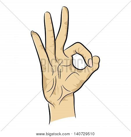 Female hand showing OK sign isolated on white background. Vector illustration. Satisfaction perfect choice confimation and approval gesture. Good idea best quality and success concept
