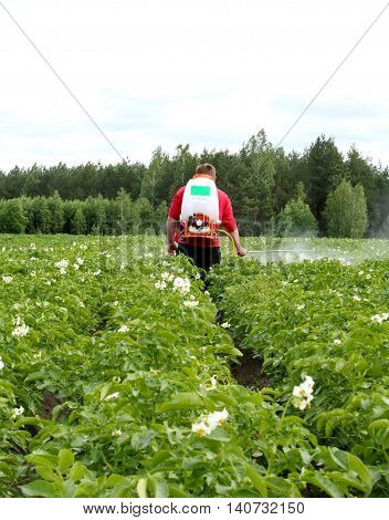 seasonal treatment of potato crops with chemicals from the Colorado potato beetle on a small agricultural plot