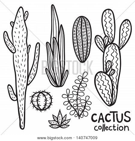 Hand drawn cacti abstract natural collection in black and white.