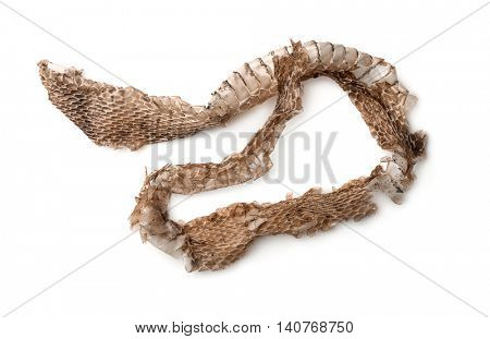 Top view of snake shedding skin isolated on white