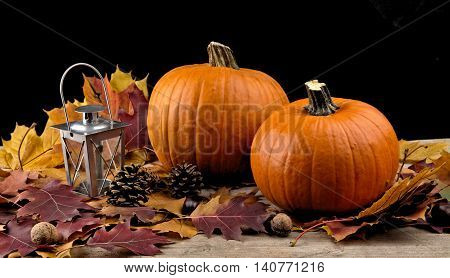 Pumpkins With Lantern For Thanksgiving Day On Black Background