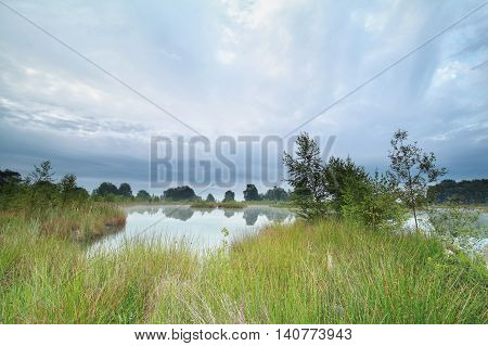 morning on little wild lake in summer