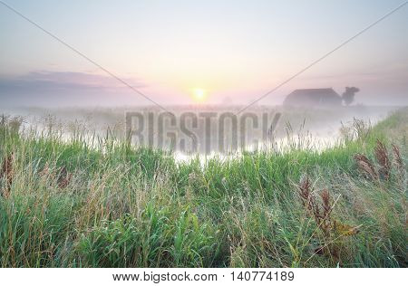 farmland at misty summer sunrise Groningen Netherlands