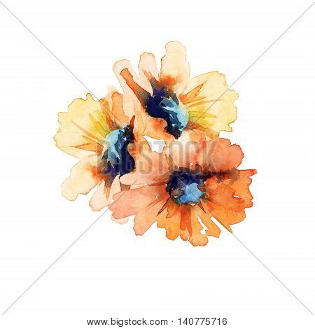 Sunflower Field flower. Isolated on white background. Watercolor illustration