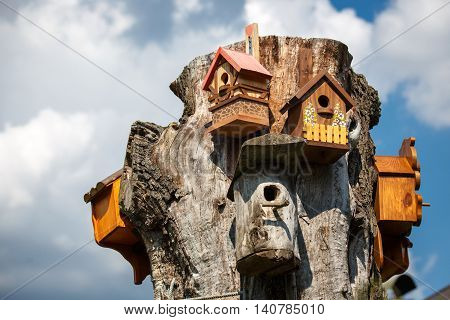 Many beautiful wooden birdhouse in a tree against summer blue sky
