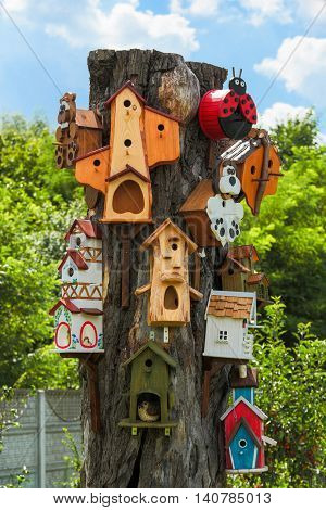 Many beautiful wooden birdhouse in a tree against summer blue sky and green trees