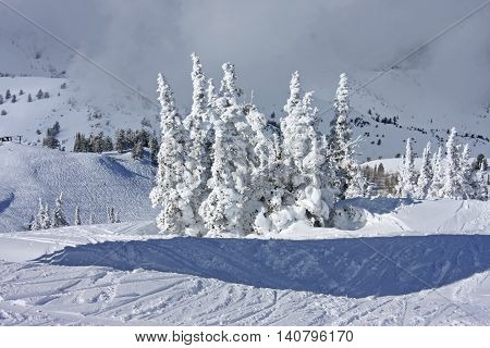 Powder Mountain, Utah after a snow storm