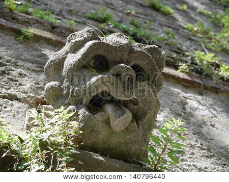 the face of a gargoyle on the stone wall