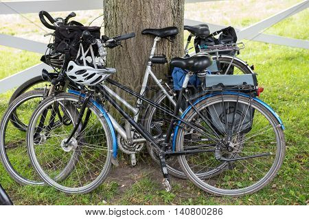 several bycicles standing at a tree near a fence