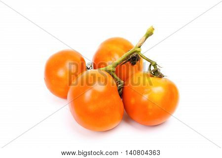 Group Of Four Small Tomato