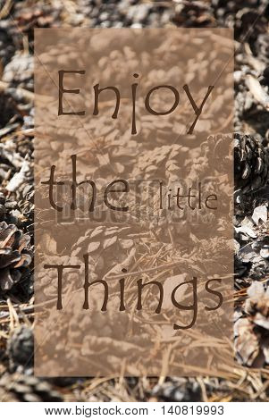 Vertical Texture Of Fir Or Pine Cone. Autumn Season Greeting Card. English Quote Enjoy The Little Things