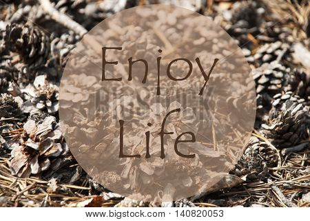 Texture Of Fir Or Pine Cone. Autumn Season Greeting Card. English Quote Enjoy Life