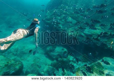 Female apnea swims in deep waters of the popular Similan Islands in Thailand, Andaman Sea. On background a lot of fish.