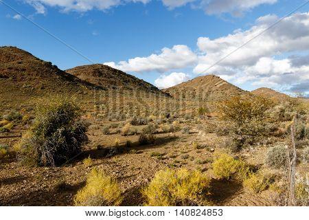 Four Mountains - Klaarstroom Landscape