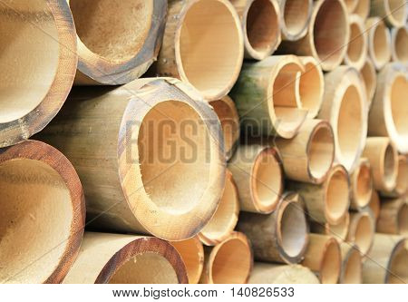 Pile of cutting bamboo of various sizes