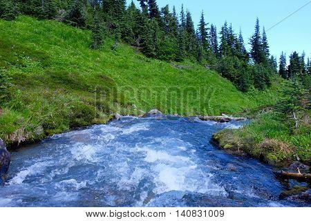 White water river in mountains. Skywalk trail on Rainbow Mountain. Whistler Garibaldi Provincial Park British Columbia Canada.