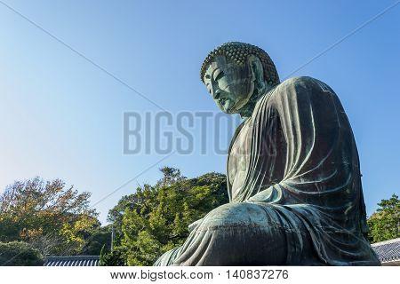 Daibutsu The Great Buddha take photo side view.