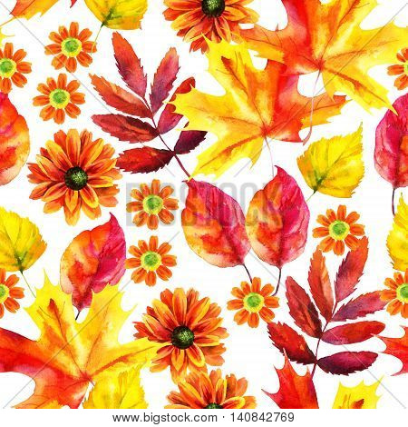 Autumn watercolor seamless pattern with autumn leaves and flowers on white background. Hand painted fall illustration