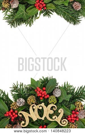 Christmas border with gold noel sign decoration with holly, snow covered  pine cones, ivy, cedar cypress and fir leaf sprigs over white background.
