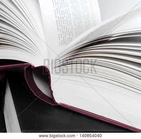 Open book, close up shot of book pages.