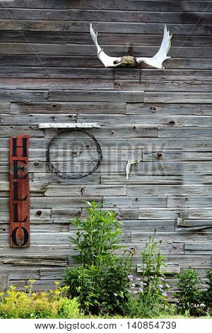 Side of Old Barn Building with Sign Hello weathered antlers green growth