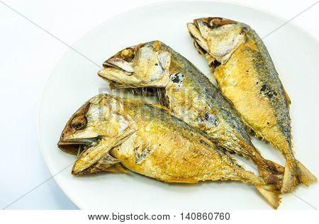 delicious mackerel fried on white plate .