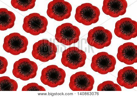Pattern With Red Watercolor Poppies On White Background.